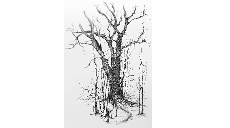 Fehlschluss Baumskulptur